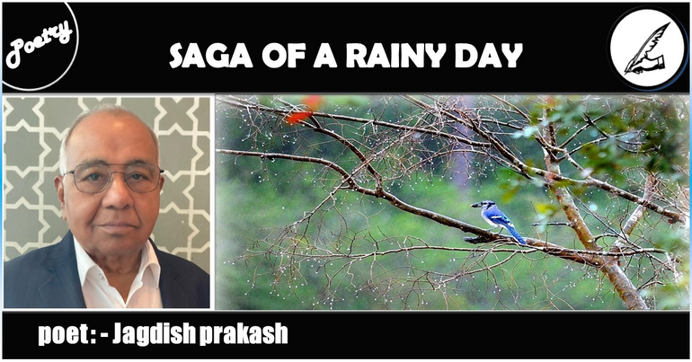 SAGA OF A RAINY DAY